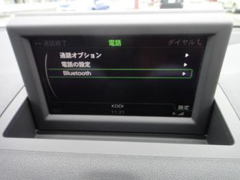 DSC09679.JPG