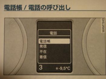 DSC09687.JPG