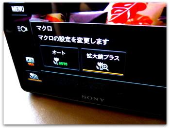 P1020434.JPG